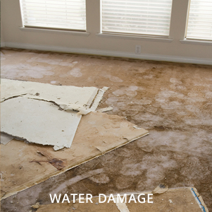 Water damage - Allied Trust Insurance